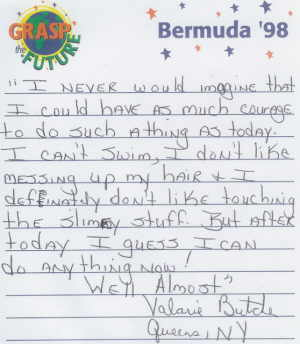 Testimonial of Bermuda tourist.