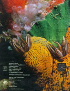 Photo by Bronson Hartley of mating nudibranchs in Bermuda. Photo is on the back cover of Broward County's Cultural Quarterly