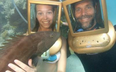 Barack the black grouper